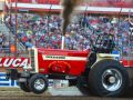 red tractor at a tractor pulling event in front of a bunch of people